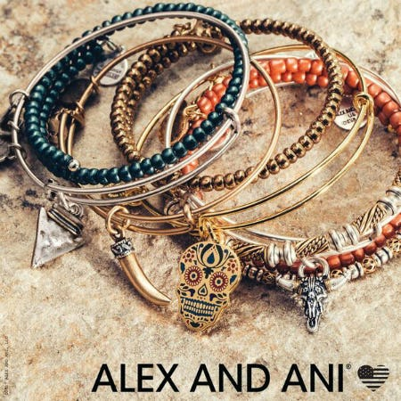 Introducing Fall 2017 at ALEX AND ANI