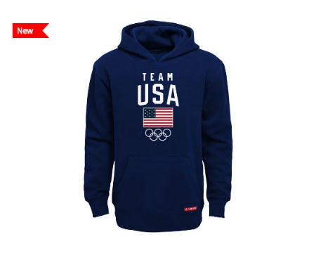 USA Men's Team & Flag Hoodie