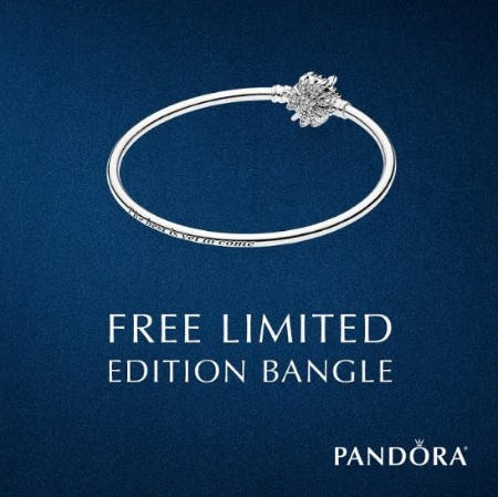 Free Limited Edition Bangle from PANDORA