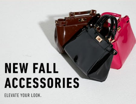 New Fall Accessories