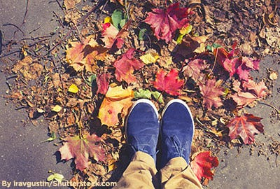 Boys navy blue suede shoes in fall.