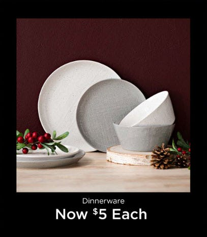 Dinnerware Now $5 Each from Kirkland's