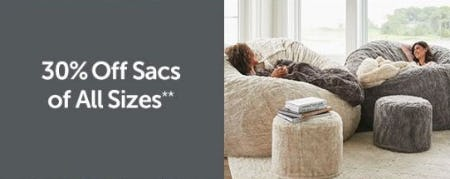 30% Off Sacs of All Sizes from Lovesac Alternative Furniture