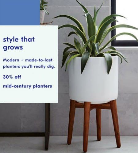 30% Off Mid-Century Planters from West Elm