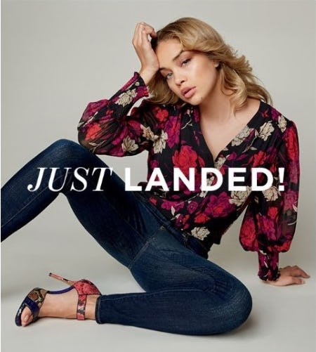 Just Dropped: New Holiday Styles from Vince Camuto