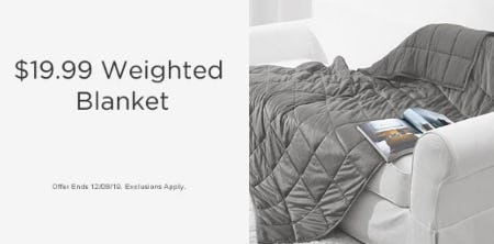 $19.99 Weighted Blanket from Sears