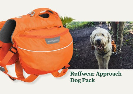 Ruffwear Approach Dog Pack from REI