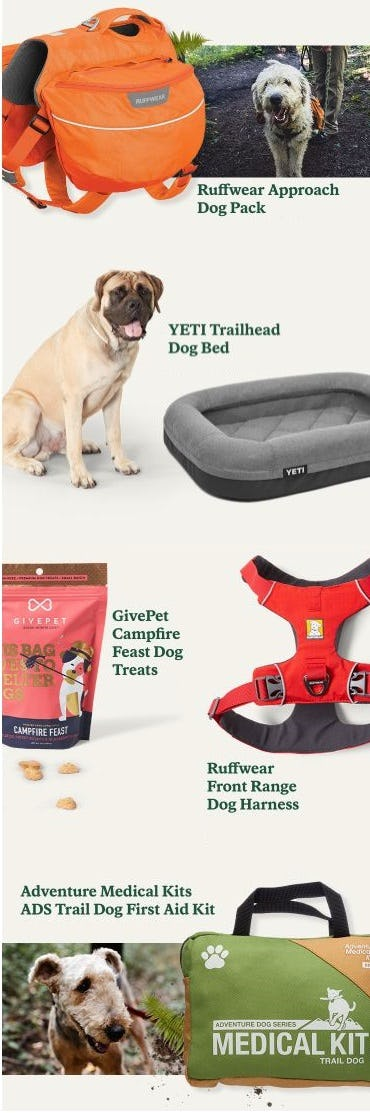 New Gear your Furry BFFs Will Love