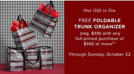 Free Foldable Trunk Organizer