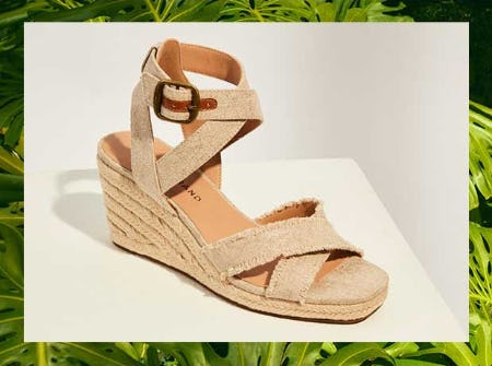 New Sandals are Here from DSW Shoes