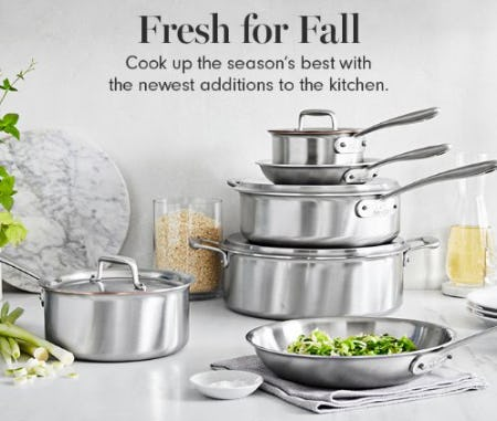 Shop New Arrivals for the Season from Williams-Sonoma