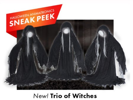 New Trio of Witches from Party City
