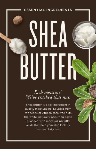 From a Tree Nut to Your Skin from The Art of Shaving