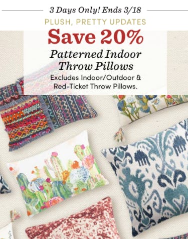 Save 20% on Patterned Indoor Throw Pillows from Cost Plus World Market