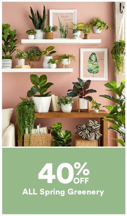 40% Off All Spring Greenery from Dick's Sporting Goods
