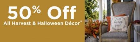 50% Off All Harvest & Halloween Decor