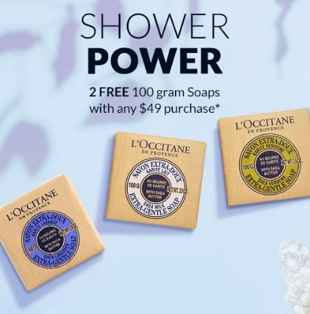 2 Free 100 Gram Soaps With Any $49 Purchase from L'Occitane