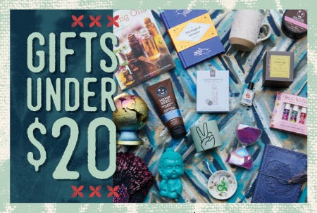 Gifts Under $20 from Earthbound Trading Company