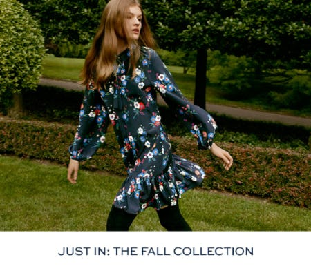 Meet The Fall Collection