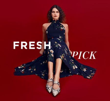 Fresh Styles for 2020 from Vince Camuto