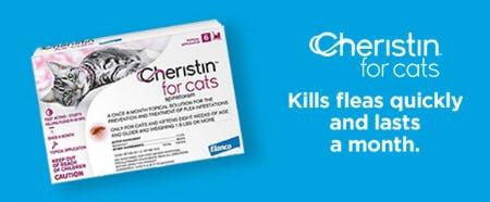 Cheristin for Cats