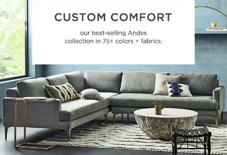 Our Andes Collection in 75+ Colors + Fabrics from West Elm
