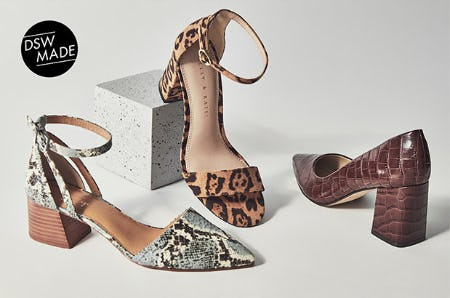 The Animal Kingdom from DSW Shoes