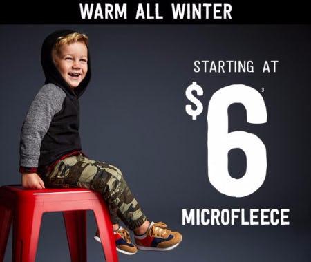 Microfleece Starting at $6