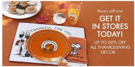 Up to 60% Off All Thanksgiving Decor