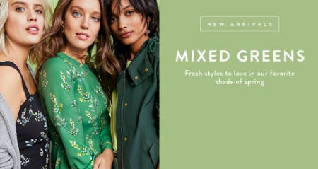 New Arrivals: Mixed Greens from Loft
