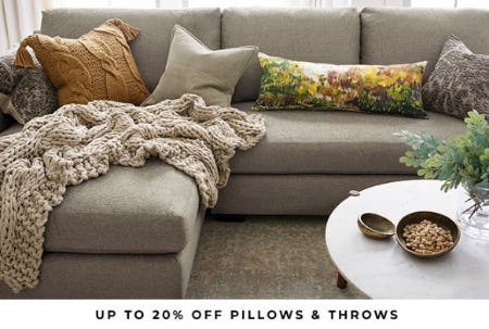 Up to 20% Off Pillows & Throws from Pottery Barn