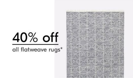 40% Off All Flatweave Rugs from West Elm