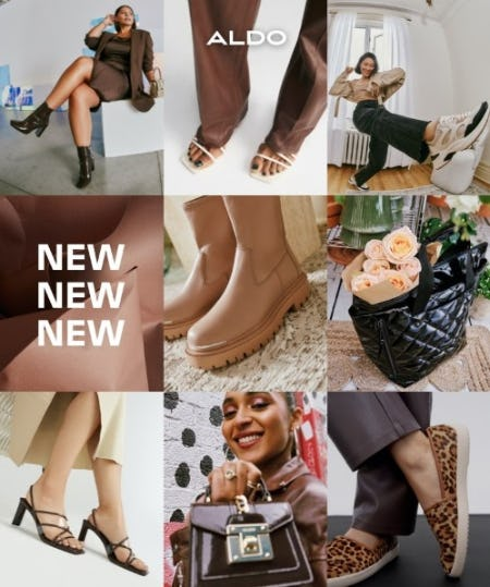 New Fall Arrivals from ALDO