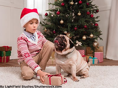 Little boy wearing a Santa hat and red and white Fair Isle sweater with his pet pug.