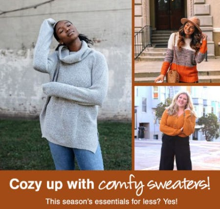 Perfectly Priced Cozy Sweaters