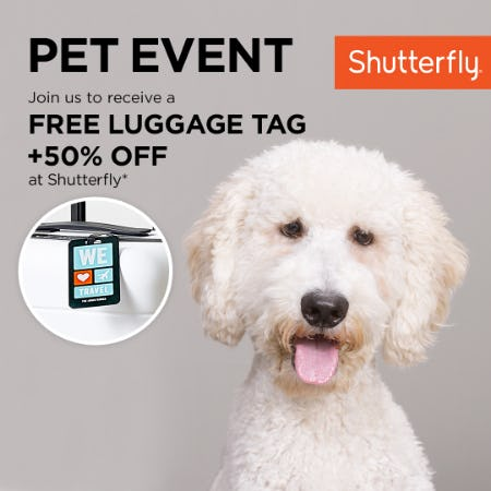 Pet Photography Event