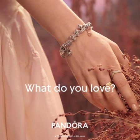 NewPandora Autumn Collection from Ben Bridge Jeweler