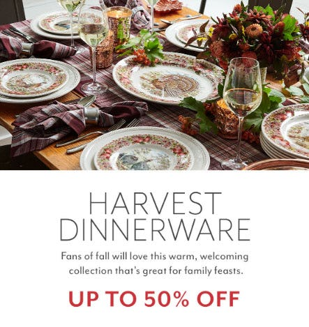 Up to 50% Off Harvest Dinnerware from Sur La Table