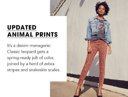 Updated Animal Prints from Bloomingdale's