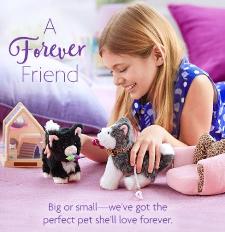 Stuffed Animals from American Girl