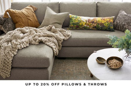 Up to 20% Off Pillow & Throws from Pottery Barn