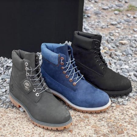 Men's Timberland 6 from Journeys
