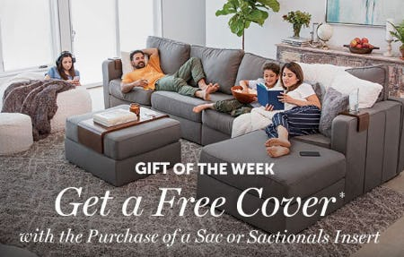 Get a Free Cover with Purchase from Lovesac